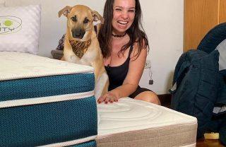 Após destruir quarto e ficar famoso, cão Chico vira garoto-propaganda e já tem 'coleção' de colchões